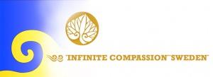 infiniteCompSWEDEN