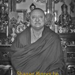 Kunzig Shamar Rinpoche, Oktober 2012, Stockholm